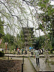 Пятиярусная пагода — самое старое строение в Киото