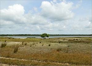 Одно из многочисленных озер, где в основном обитают птицы