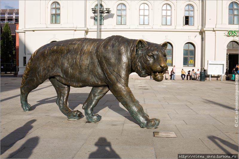 3. Тигрица куда-то идёт по площади деловым шагом. Хорошо, что она бронзовая, иначе от такой тигрицы никому бы не поздоровилось. Правда, мне сообщили, что это вовсе не тигрица, а тигр, но мне почему-то хочется считать, что это тигрица. Внизу в центре — моя тень, если это кому-то интересно.