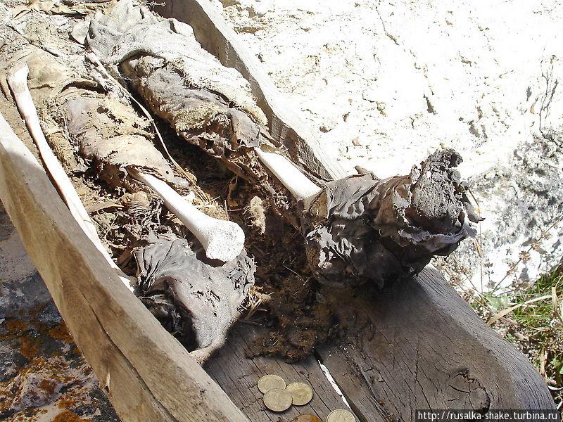 даргавс город мертвых фото