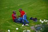 Отдых на лужайке