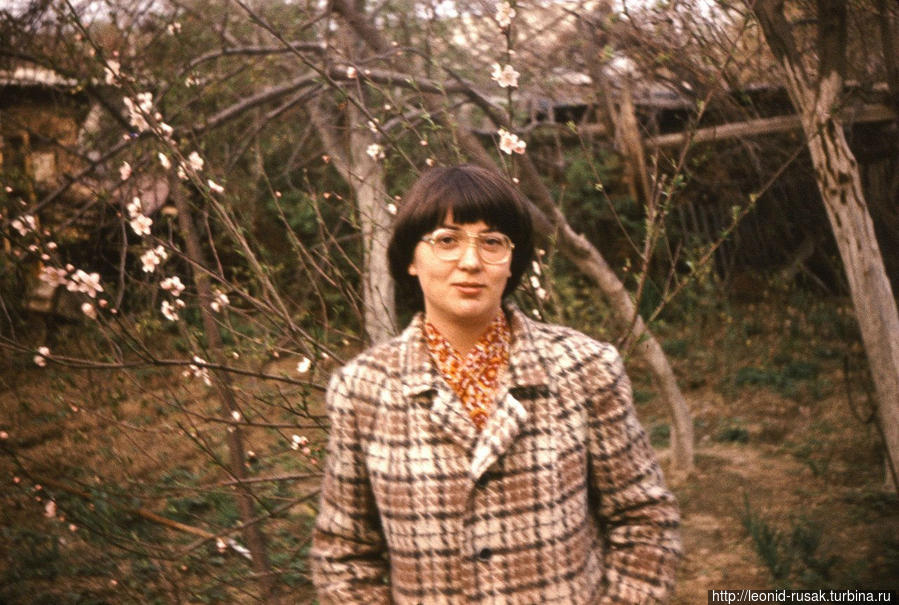 У Елены цветущие молодые яблоньки выращены из косточек обычного спелого яблока, снятого по осени с ветки яблони. Фото 1978 года.