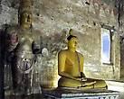 Кроме многочисленных статуй Будды в одной из пещер посетители могут видеть деревянную статую короля Валагамбаху, которого монахи, жившие здесь в 1 веке до нашей эры, приютили у себя, когда тот покинул оккупированную врагами Анурадхапуру. Король не сидел, сложа руки, а тоже принял участие в обустройстве храма, чем и заслужил о себе благодарную память потомков.
