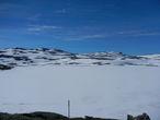 Озеро Taugevatn в этом году так и не избавилось от льда. В этих местах, если повезет, можно встретить диких оленей.