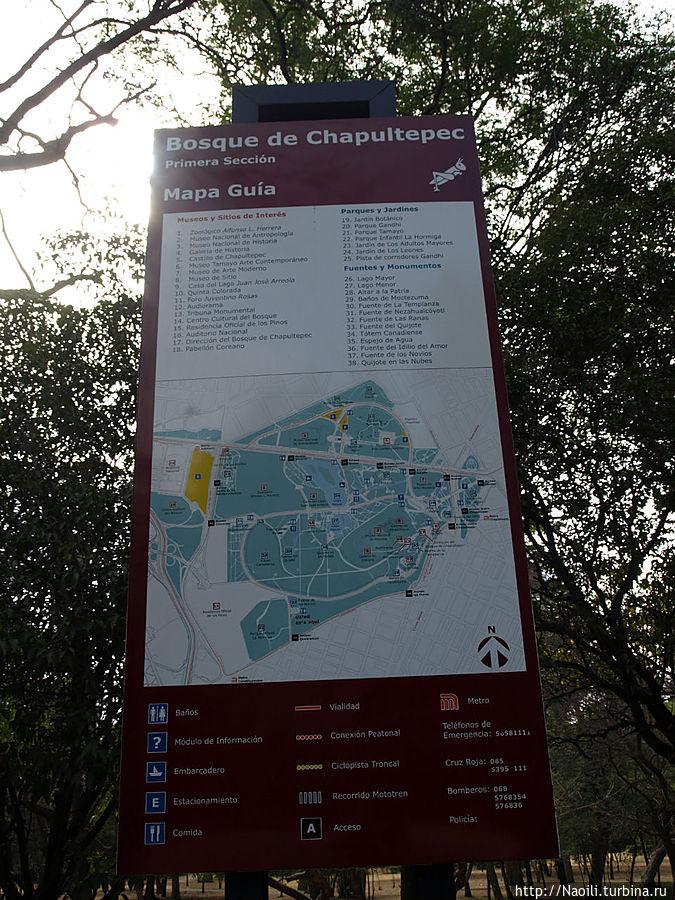 Схема 1й секции парка