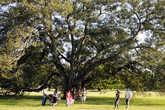 Многие сиднейцы проводят свои выходные в многочисленных парках города