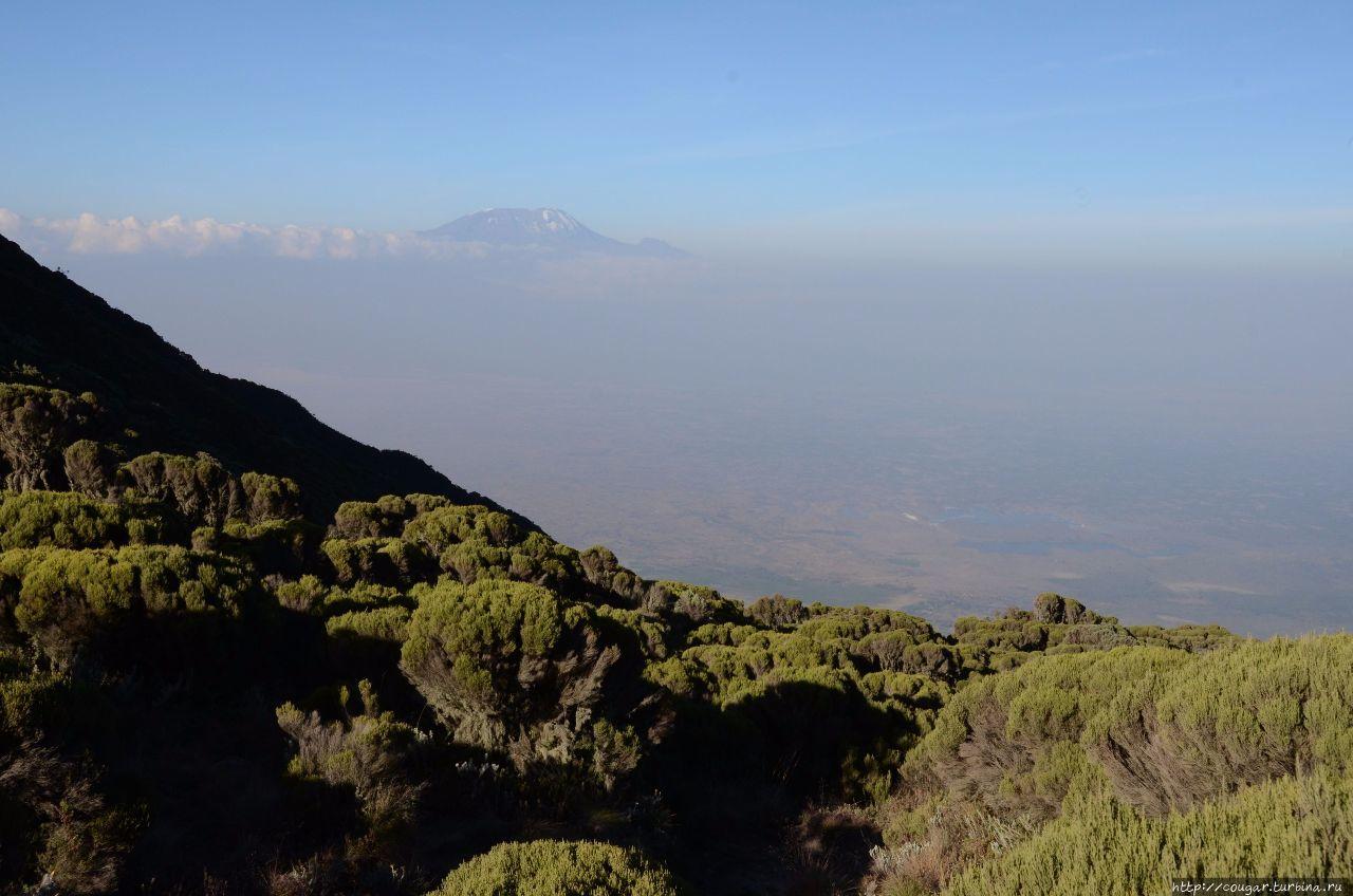 Килиманджаро на горизонте, вершина Кибо. Небольшой уступ справа — вершина Мавензи. Моши, Танзания