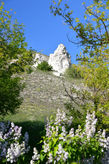 «Дивы» — это меловые столбы и скалы из крепкого мела