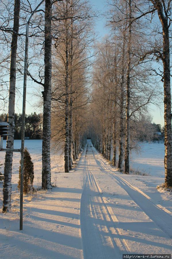 Коттедж Сомеро, Финляндия