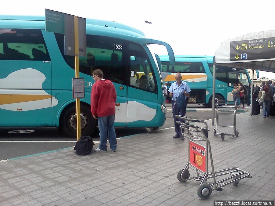 Отправление 60-го и 66-го автобусов рядом, не перепутайте!