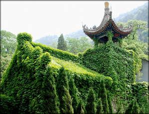 Целебные источники китайских императоров