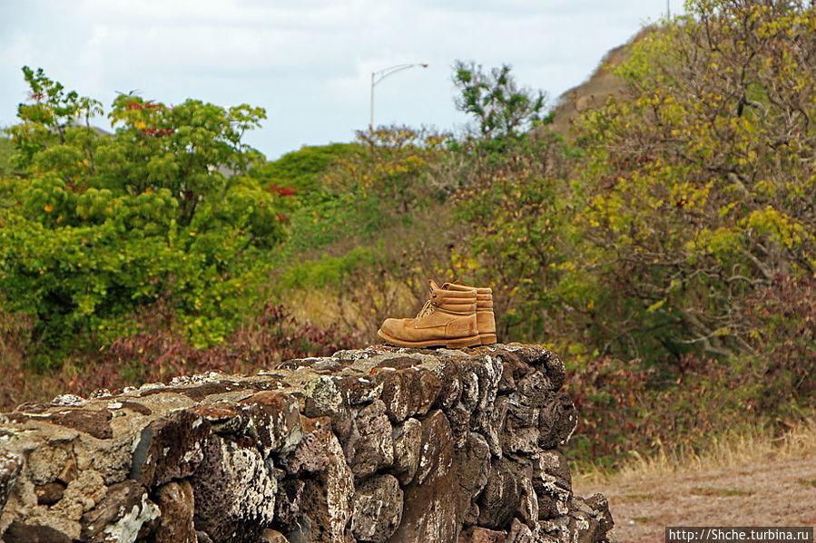 не по сезону обувка? :))) Канеохе, Соединенные Штаты Америки
