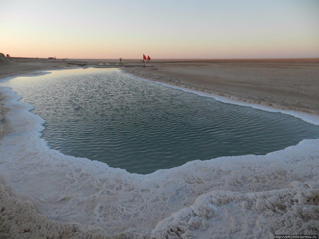 Экскурсия в Сахару. Ч — 5. Соляное озеро Шотт-Эль-Джерид