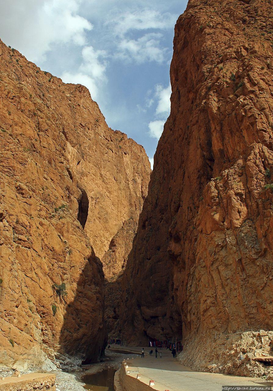 Живописное Марокко. Ущелье Тодра