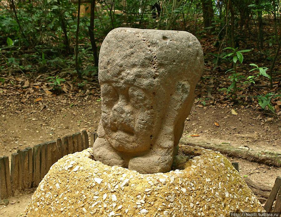 А эту скульптуру назвали акробат. Такая позиция не особо типична для древних экспонатов, но ольмеки были весьма креативны: даже для современного мира