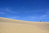 ну а нам, после прогулки вдоль моря, пора идти вглубь дюны