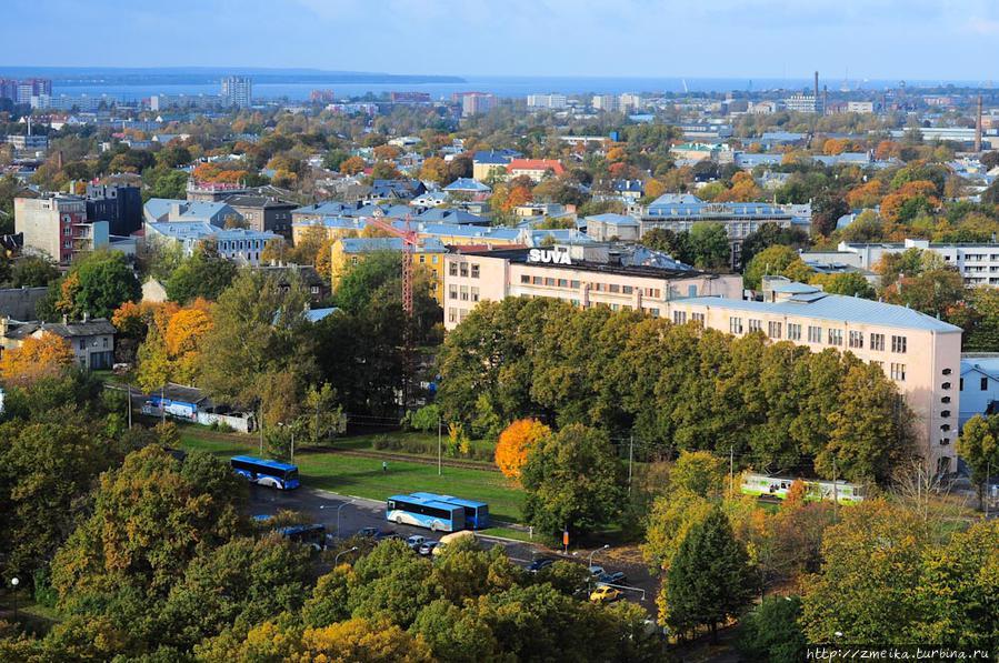 Поворачиваемся направо. Почти прямо под нами линия трамвая, которая идет в микрорайон Копли. Вдали панорама одного из районов города — Пыхъя-Таллинн, когда-то он был рабочей окраиной, а теперь уютный старый зеленый райончик, хотя нравы остались такими же.