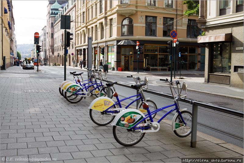 1. Судя по тому, что все велосипеды одинаковые, а на задних колёсах реклама, тут находится прокат велосипедов.