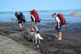 Туристы из Ю. Сахалинска. Они хотели, пройдя перевал Цапко, вдоль берега моря дойти до бухты Тихой. Расстояние до Тихой отсюда 12 км. Как я уже писала, был прилив и мужчину волной унесло в море .Следующая волна прилива выбросила его на камнень и он успел  ухватится за него.  Желание идти морем отпало сразу и они решили вернуться через перевал, чтобы оттуда  добраться до Тихой.