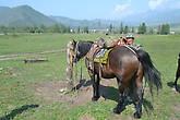 Валерий снаряжает коня Ирины.