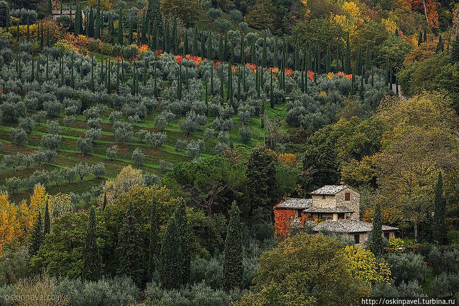 Музыка меня зовет вверх, я уже на вершине крыш... Четона, Италия