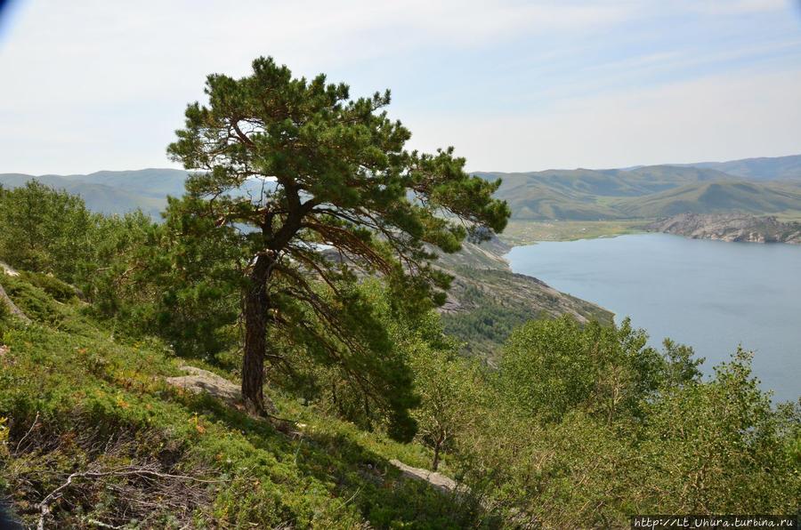 озера для рыбалки северо казахстанской области