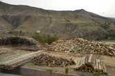 Заготовка древесины — один из важных промыслов региона вокруг Куско.