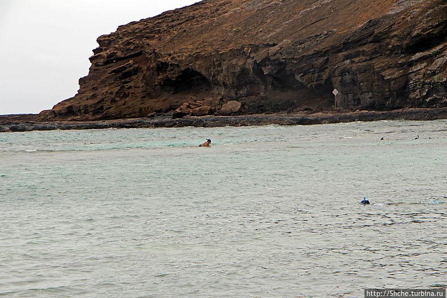 я, практически на карачках, преодолеваю риф, не нашел в том месте разрыв