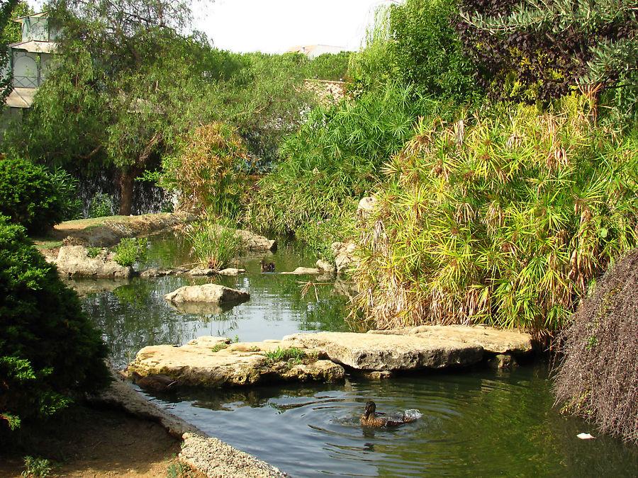 Парк Arroyo de la Represa