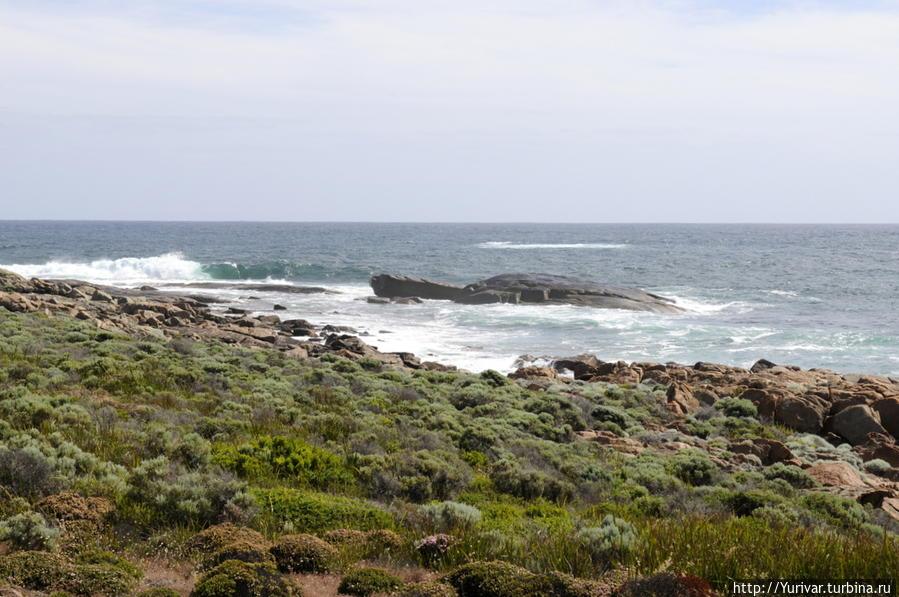 Берега мыса Леувин неуютные и купаться не хочется Маргарет-Ривер, Австралия