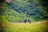 Расстояние от нашего лагеря у подножья Восточного Ачешбока до седловины между Большим и Малым Тхачами, примерно 11 километров. Тропа пролегает по передовому хребту и склону горы Асбестной. Перепад высот особо  не заметен, каждый раз огибая очередную гору, глазу открывается новая умопомрачительная панорама Кавказского хребта.