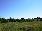 Это не просто фотография пейзажа,  это и есть починок Рассановский  сегодня, в  одну  сторону...