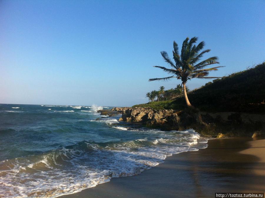 Не парься! Сосуа, Доминиканская Республика