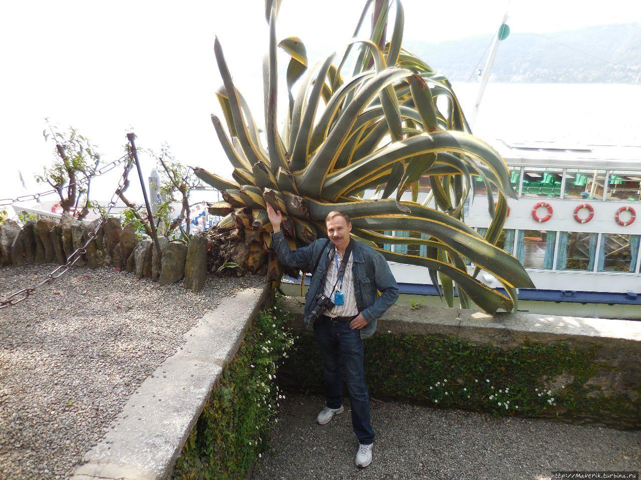 Остров Мадре — Жемчужина озера Лаго — Маджоре Остров Мадре, Италия