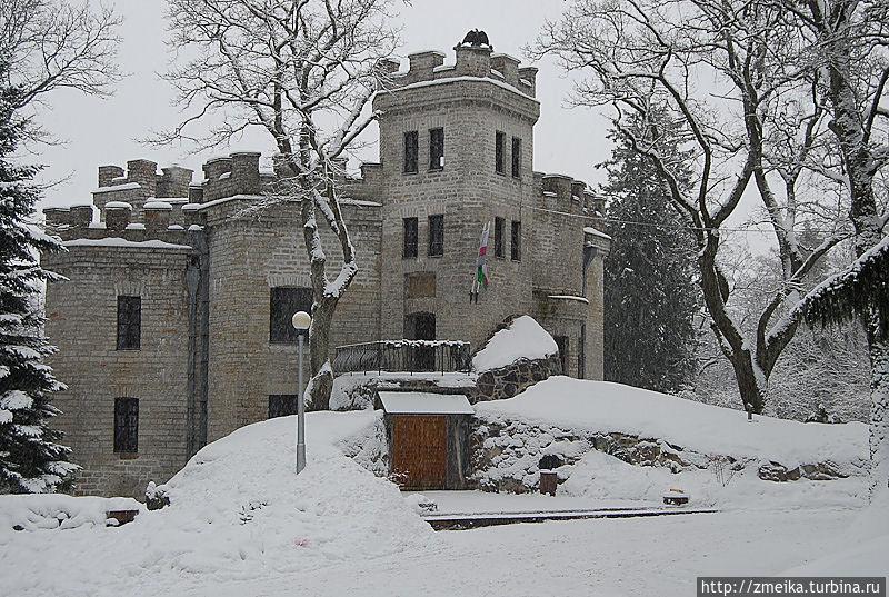 На склоне Мустамяэ, по проекту вон Глена возвели двухэтажный замок в 1886 году. В 1918, после отъезда Николая, замок был разграблен, полностью отреставрирован он только к 1960 году при участии ТТУ.