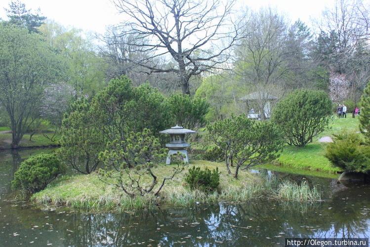 Японский сад в Москве