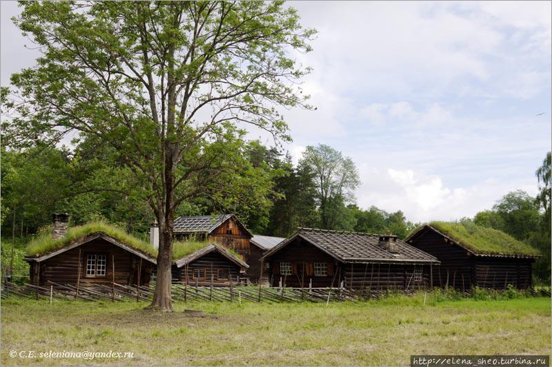 8. Возможно, именно так выглядела когда-то норвежская деревня или хутор.
