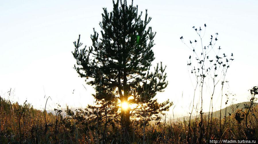 Солнце взошло!  На перевале Баранча