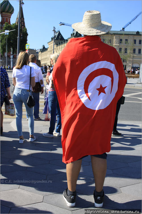 3. Флаг Туниса гуляет на
