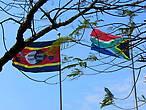 Флаги Свазиленда и Южной Африки