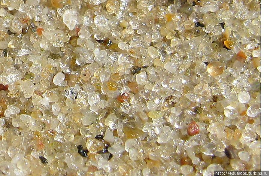 А Вы когда нибудь рассматривали на пляже песок? Светлогорск, Россия
