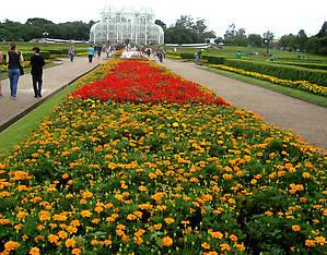 Цветочные ковры устилают территорию сада.