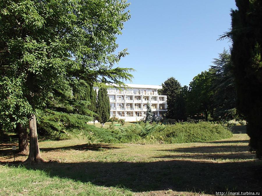 Ботанический парк – уникальный оазис тишины и прохлады