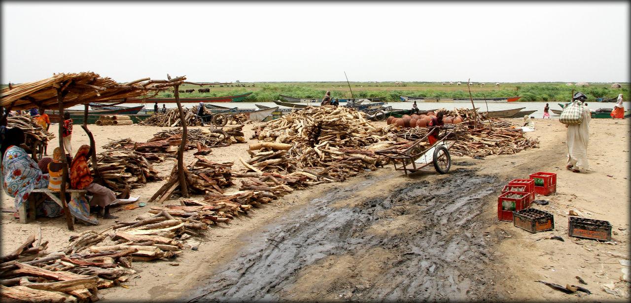 Жизнь озера Чад — 2 Регион Лак, Чад