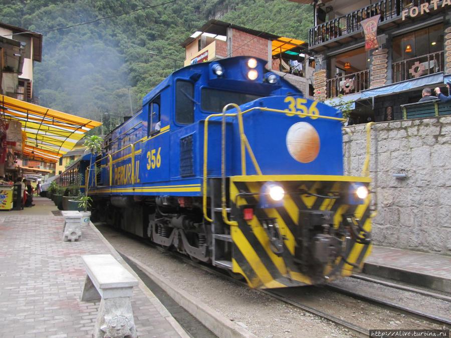 Поезд компании Перу-Рэйл