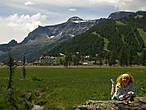 на альпийских лугах