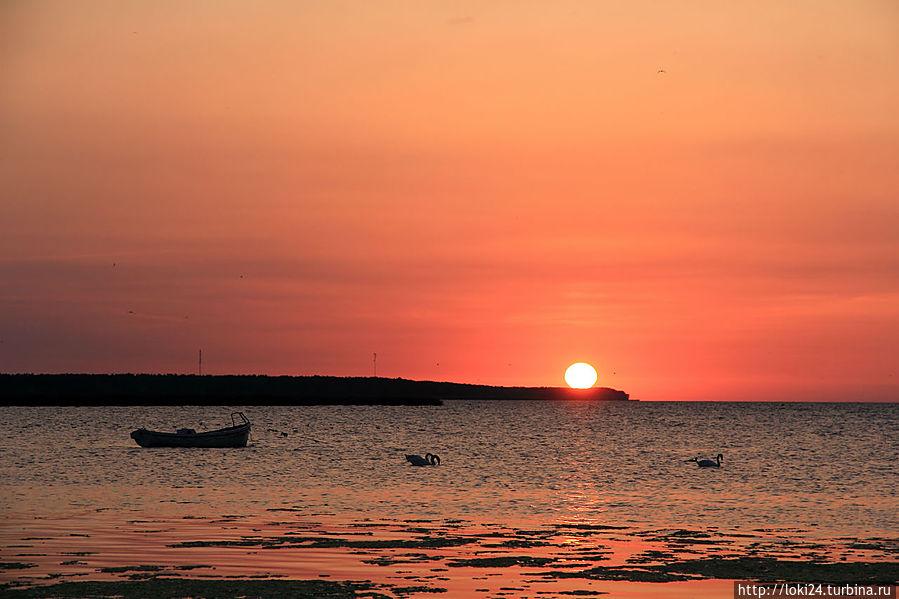восход на заливе
