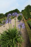 Сады существовали практически 40 лет на протяжении правления аж трёх королей.