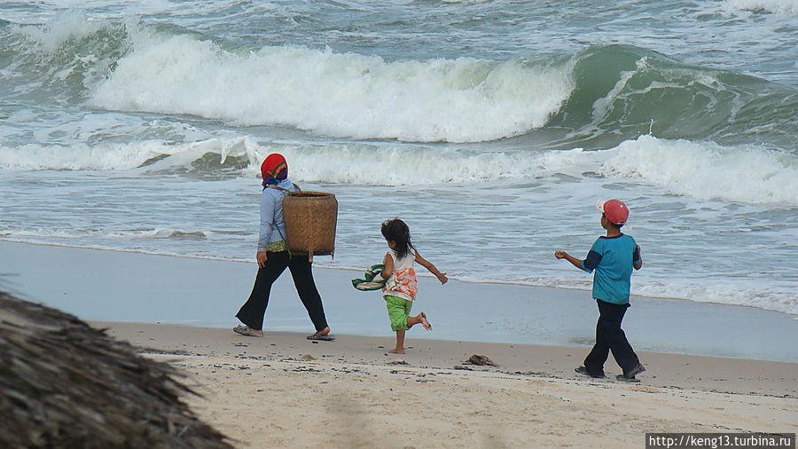 Редкие гости на нашем пляже.