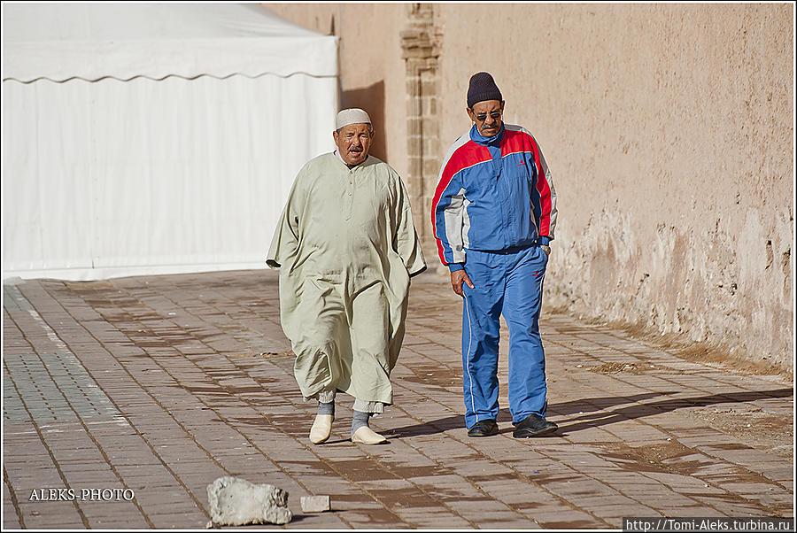 Хвостатые в лабиринтах медины (Марокканский Вояж ч16) Эссуэйра, Марокко